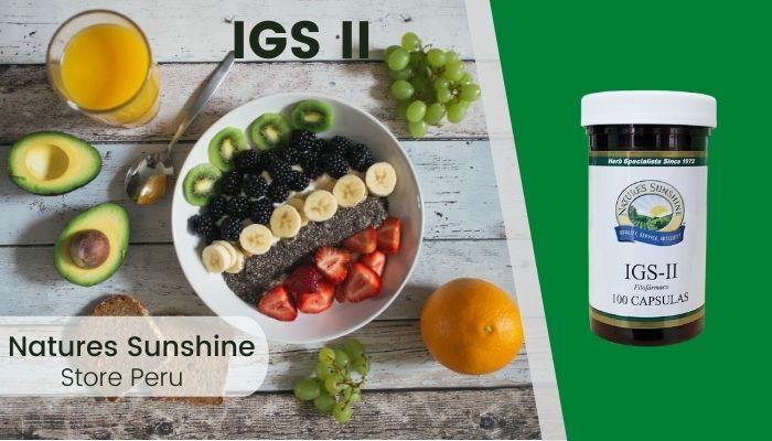 IGS II